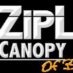 Zipline Canopy Tours of Blue Ridge
